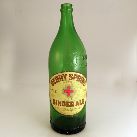 Berry Spring Ginger Ale Beer