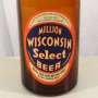 Million Wisconsin Select Beer Picnic Photo 2